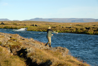 Fly-Fishing-in-Iceland