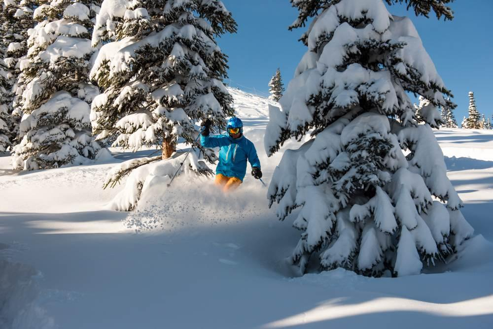 Marmot-Basin-Powder_CREDIT_Marmot_Basin.jpg