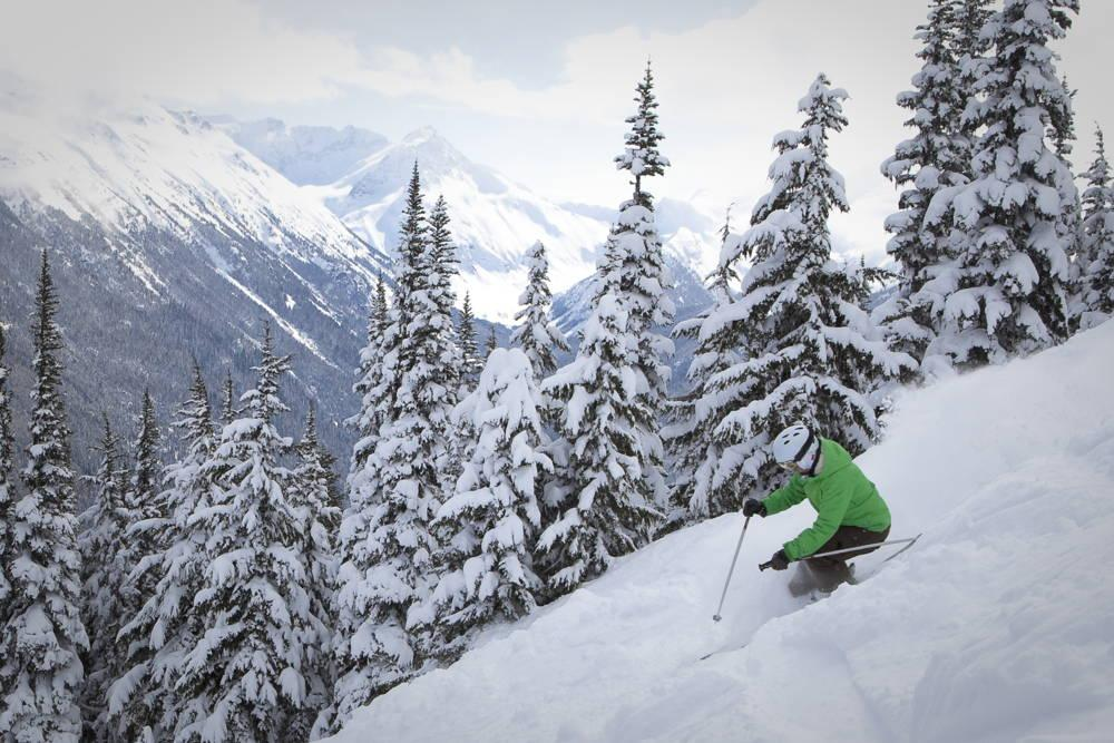 Whistler_skier_in_trees.jpg